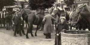 Hestehandlerne fortsatte på Hestetorvet, efter at Dyrskuet var flyttet. Glems hestebrønd ses forrest